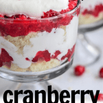 Cranberry Trifle Recipe (Sugar Free and Keto Trifle)