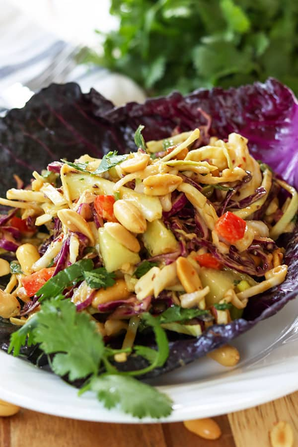 Thai Peanut Salad (Low Carb Keto)