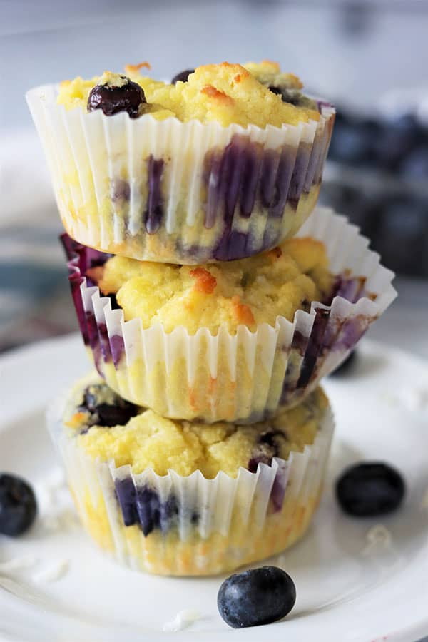 Coconut Blueberry Muffins (Keto Coconut Flour Muffins)