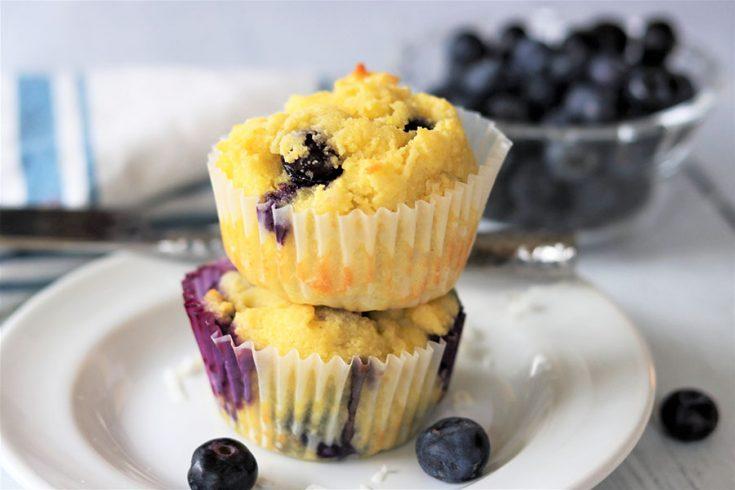 Coconut Blueberry Muffins, Seeking Good Eats