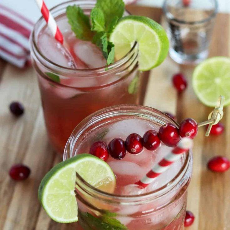 Cranberry Mojito, Seeking Good Eats