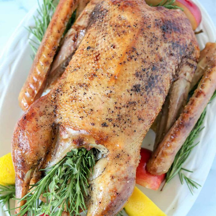 Feature image of a roasted goose served on a white platter and surrounded by sprigs of fresh herbs, red apples, and lemons.