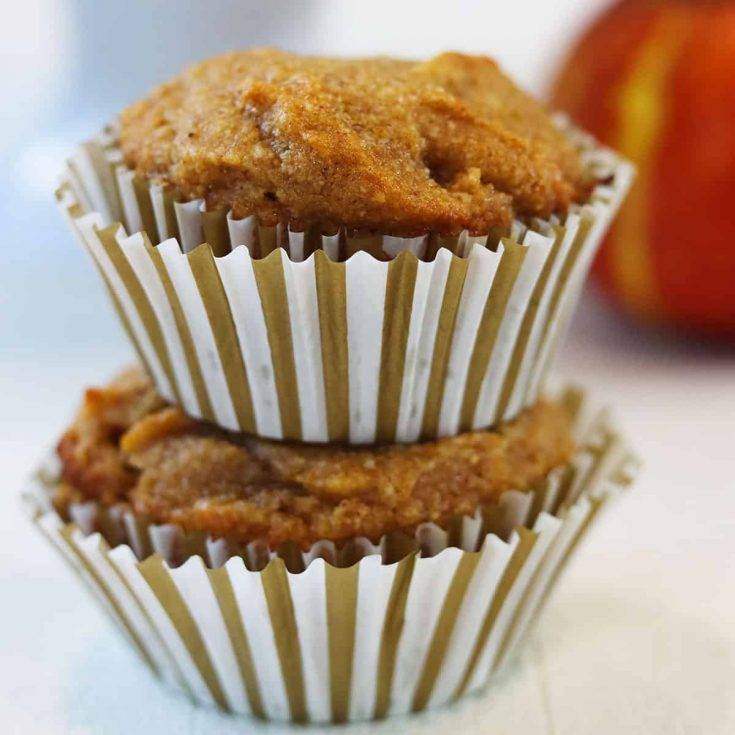 Gluten Free Pumpkin Muffins, Seeking Good Eats